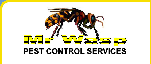 Mr Wasp Pest Control Shrewsbury
